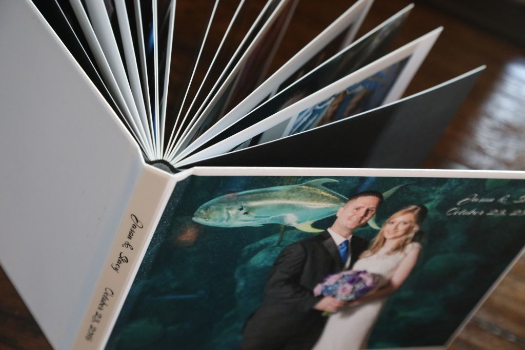 Albums Reprints Celebrations Of Tampa Bay Wedding Photographers Videographers And More Celebrations Of Tampa Bay Wedding Photographers Videographers And More
