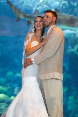 Photographers in Tampa Aquarium