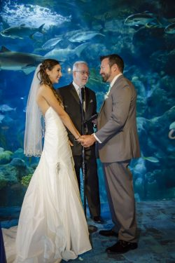 Florida Aquarium Weddings