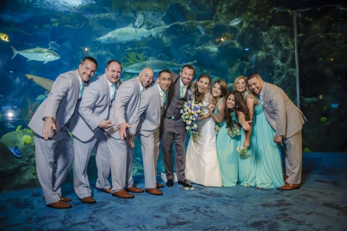 Wedding at Fl Aquarium